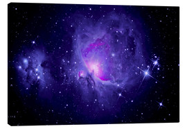 Canvas print  Orion Nebula M 42 and Running Man Nebula - MonarchC