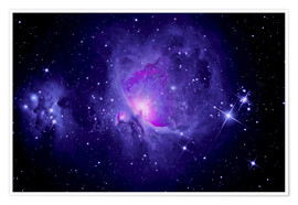 Premium poster  Orion Nebula M 42 and Running Man Nebula - MonarchC