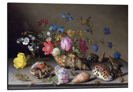 Aluminium print  Flowers, shells and insects - Balthasar van der Ast