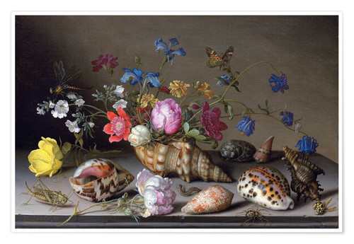 Premium poster Flowers, shells and insects