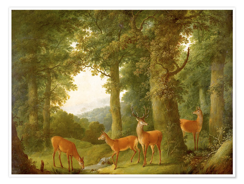 Premium poster Forest Landscape with Deer, 1760/70