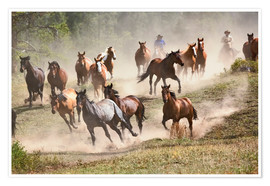 Premium poster Horses running during roundup