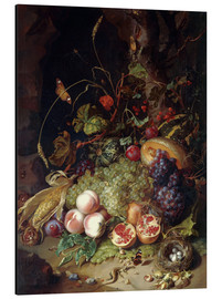 Aluminium print  Still life with fruits and insects - Rachel Ruysch