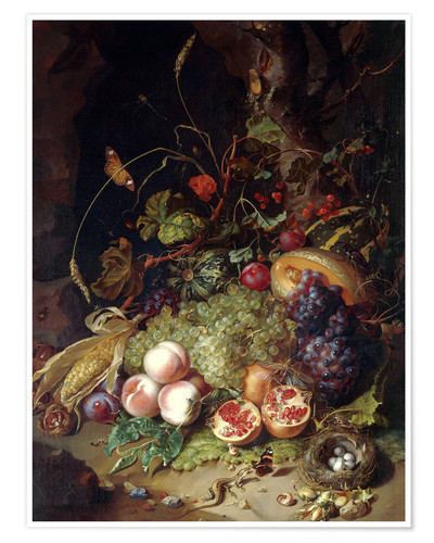 Premium poster Still life with fruits and insects