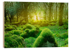 Wood print  irish forest - Nadine Conrad