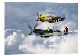 Acrylic print  Flying Brothers - airpowerart