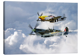Canvas  Flying Brothers - airpowerart