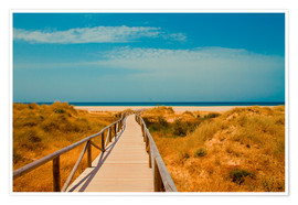Premium poster way to the beach - Tarifa (Andalusia), Spain