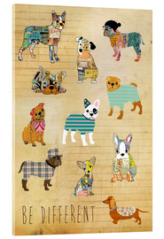 Acrylic print  be different dogs - GreenNest