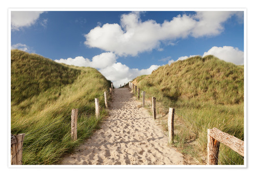 Premium poster Sylt, path through dunes