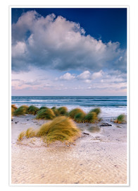 Premium poster Baltic shore magic morning
