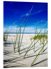 Acrylic print  a day at the beach - Timo Geble