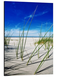 Aluminium print  a day at the beach - Timo Geble