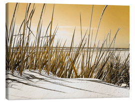 Canvas print  Düne Mecklenburg Strand Impression senf - Städtecollagen