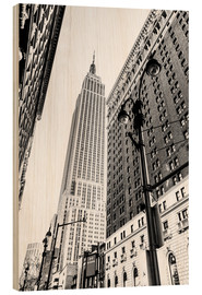 Sascha Kilmer - New York City - Empire State Building (monochrome)