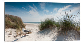 Aluminium print  Dune with fine beach grass and seagull, Sylt - Reiner Würz