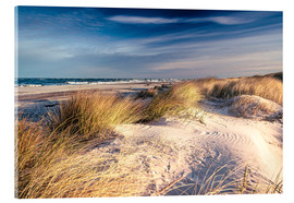 Acrylic print  Sand dunes at the beach - Sascha Kilmer