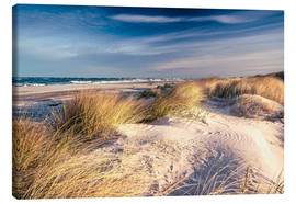 Canvas  Sand dunes at the beach - Sascha Kilmer