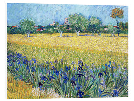 Foam board print  View of Arles with Irises in the Foreground - Vincent van Gogh