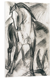 Foam board print  Young horse in mountain landscape - Franz Marc