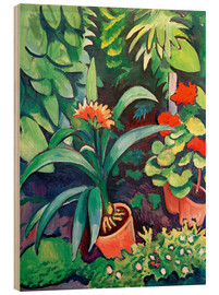 Wood  Flowers in the Garden, Clivia and Pelargoniums - August Macke