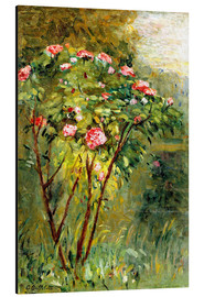 Aluminium print  The rose bush - Gustave Caillebotte