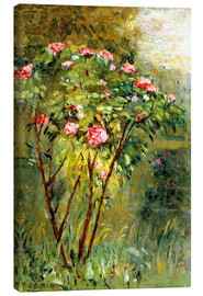 Canvas print  The rose bush - Gustave Caillebotte