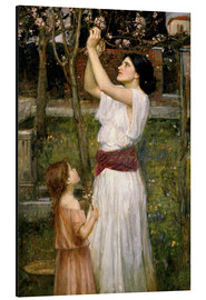 Aluminium print  Gathering Almond Blossoms - John William Waterhouse