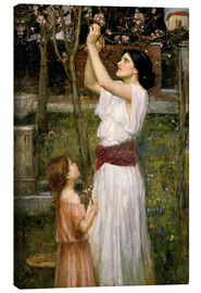 Canvas  Gathering Almond Blossoms - John William Waterhouse