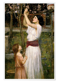 Premium poster  Gathering Almond Blossoms - John William Waterhouse