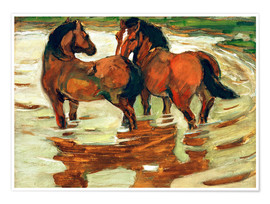 Premium poster Two horses in the flood