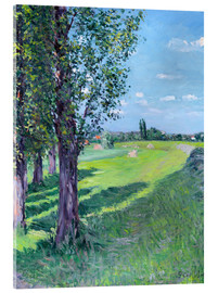 Acrylic print  Petit Gennevilliers from the 'Aumone Graben' - Gustave Caillebotte