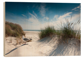 Wood print  Sylt - dune with fine beach grass and seagull - Reiner Würz RWFotoArt