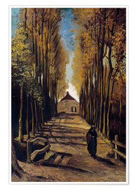 Premium poster Poplar avenue in autumn