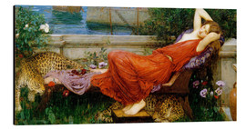 Aluminium print  Ariadne - John William Waterhouse