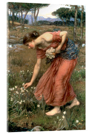Acrylic glass  Narcissus - John William Waterhouse