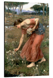 Aluminium print  Narcissus - John William Waterhouse