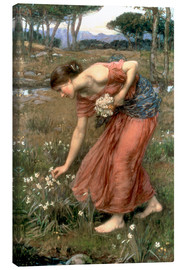 Canvas  Narcissus - John William Waterhouse