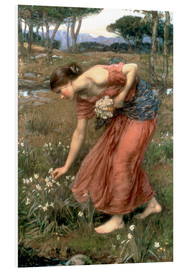 Forex  Narcissus - John William Waterhouse