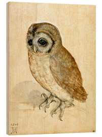 Wood print  Little owl - Albrecht Dürer