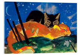 Acrylic print  Two cats - Franz Marc