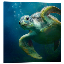 Acrylic print  Bubbles, the cute sea turtle - Photoplace Creative