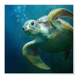 Premium poster Bubbles, the cute sea turtle