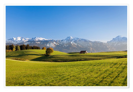 Premium poster  Alps in autumn - Markus Lange