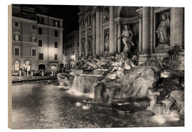 Wood print  Trevi fountain in Rome - Filtergrafia
