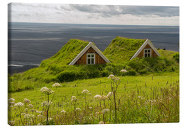 Canvas  Traditional Houses in the Skaftafell National Park, Iceland - Markus Ulrich