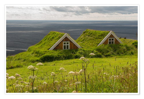 Premium poster Traditional Houses in the Skaftafell National Park, Iceland