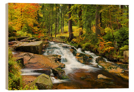 Wood print  Bode cases in the Harz - Dave Derbis