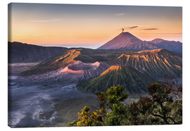 Canvas print  Mount Bromo Sunrise - Andreas Wonisch