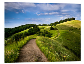 Acrylic glass  Path over Rolling Hills in Summer - Andreas Wonisch